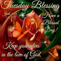 Good Morning Everyone, Happy Tuesday. I pray that you have a safe and blessed day! Tuesday Quotes Good Morning, Happy Tuesday Quotes, Good Morning Greetings, Tuesday Greetings, Happy Sunday, Good Night Blessings, Morning Blessings, Monday Blessings, Weekday Quotes