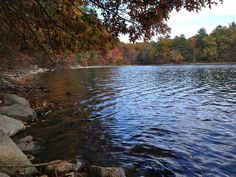 Literary Tourism: 6 American Sites That Inspired Great Books Walden Pond, Literary Travel, Road Trip Adventure, Henry David Thoreau, Peaceful Places, Great Books, Storytelling, Tourism, Scenery