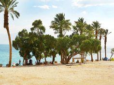 Beach at Ein Gedi Spa (חוף עין גדי), Dead Sea, Israel Dead Sea Israel, Sea Level, Spa, Ocean, Earth, World, Water, Beautiful, Gripe Water