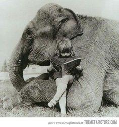 Elefant pige.