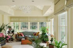 These Orangeries are designed manufactured and built by David Salisbury. Ask for our bespoke design and build service for all timber frame extensions. Orangery Extension, Timber Kitchen, Enclosed Patio, Planning Permission, Window Dressings, Screened In Porch, Bespoke Design, Drawing Room, Room Colors