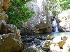 PN Los Alcornocales - Rio de la Miel