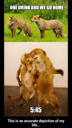 Hahaha so is