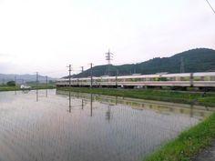 市島地域 水鏡の電車
