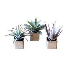 Hip To Be Square Plant Pots - Set of 3 - Unique Modern Furniture - Dot & Bo