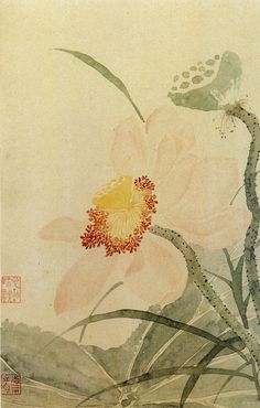 "kawakawacollection: "" Painting gallery of Yun Shou Ping "" Japanese Artwork, Japanese Painting, Chinese Painting, Chinese Art, Chinese Plants, Chinese Flowers, Illustration Botanique, Plant Illustration, Botanical Illustration"