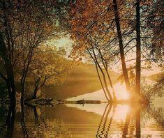 Sol de otoño. Con movimiento.
