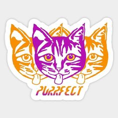 Shop Purrfect cat stickers designed by hoganfinland as well as other cat merchandise at TeePublic. Big Cats, Cool Cats, Cat Merchandise, Small Cat, Cat Stickers, Typography Quotes, Catwoman, Sticker Design, Cat Lady