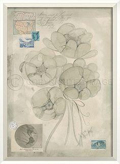 WC Flowers Apollo by Spicher&Co.