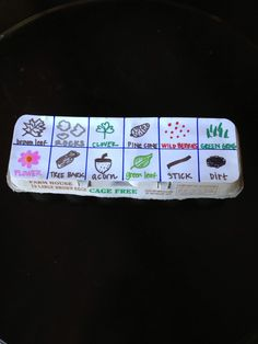 Nature Hunt (card stock glued on the egg carton, with super artistic drawings). :)