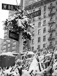 NYC. A snow day