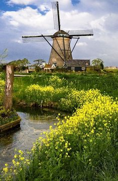 Kinderdijk (Zuid Holland ), The Netherlands Places To Travel, Places To See, Photo Images, Voyage Europe, Le Moulin, Wonders Of The World, Countryside, Beautiful Places, Amazing Places
