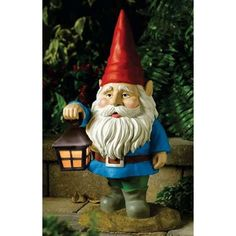 For some odd reason, Sarah loves gnomes.  Thinking of getting her one for the backyard