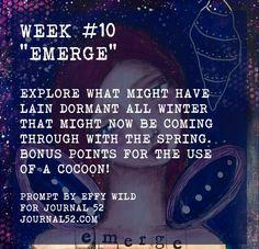 Week #10