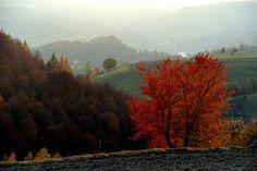 Zegiestow in autumn, Poland