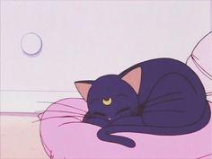 grafika cat, sailor moon, and anime Old Anime, Manga Anime, Anime Art, Sailor Moon Luna, Sailor Moons, Sailor Moon Aesthetic, Cat Aesthetic, Theme Animation, Luna And Artemis