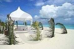 Beach Weddings New Port Richey Fl