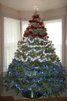 patriotic christmas tree | Recent Photos The Commons Getty Collection Galleries World Map App ...