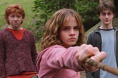 Which Hogwarts House Do You Belong In? I got Gryffindor ; )
