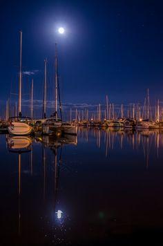 Under the moonlight - null