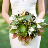 succulents, fiddlehead ferns, boston ivy, white mini calla lilies, seeded eucalyptus, pieris japonica, textural foliage