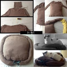 DIY cat bed, For sure going to make this one!