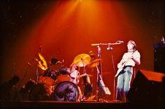 Pink Floyd at Madison Square Garden, 1977