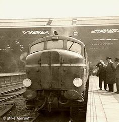 Dieselpunk: British Railways Class D16/1 October 2009
