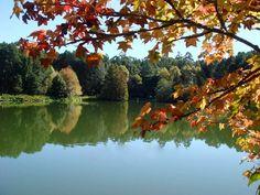 Parque Witeck,  Rio Grande do Sul