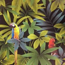 Image result for parrot jungle design image