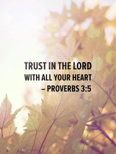 """Trust in the Lord with all your heart and lean not on your own understanding."" Proverbs 3:5"