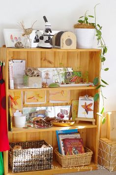 Setting Up a Reggio Inspired Homescool Room - Adding Plants - An Everyday Story