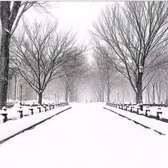 Winter Storm Pax Hits NYC Instagram Pictures ❤ liked on Polyvore featuring backgrounds, winter, pictures, photo and pics