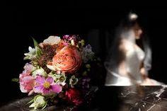 Your wedding planning for destination weddings in Switzerland Elope Wedding, Wedding Sets, Destination Wedding, Wedding Venues, Wedding Planning, Wedding Day, Wedding Photoshoot, Marry Me, Switzerland