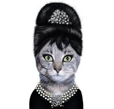 Cat! #BreakfastAtTiffanys