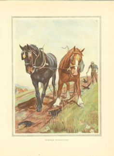 Vintage 1923 Horse Print Two Shire Horses Pulling Plough In Field Farmer Guides Plough Book Plate Book Illustration by printsandpastimes on Etsy