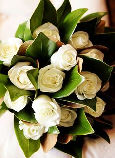 Magnolia leaves and cream roses.