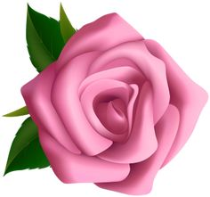 """Photo from album """"РОЗЫ"""" on Yandex. Clipart Png, Rose Clipart, Flower Clipart, Flower Art Images, Flower Pictures, Pink Rose Flower, Purple Roses, Rose Vine Tattoos, Beautiful Flowers Wallpapers"""