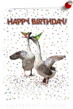 ' Confetti and Streamers Celebrating Geese ' Greeting Card by Happy Birthday Animals, Happy Birthday Pictures, Happy Birthday Parties, Happy Birthday Greetings, Animal Birthday, Funny Birthday Cards, Birthday Greeting Cards, Card Birthday, Hunting Birthday