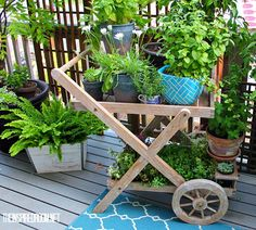 Creative ways to enjoy tiny gardens inside and out! Click for more fun spring small garden inspiration!