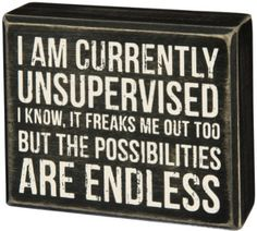 """Wood box sign with a distressed finish Depicts the words """"I Am Currently Unsupervised I Know, It Freaks Me Out Too But The Possibilities Are Endless"""" Made of wood. Now Quotes, Sign Quotes, Great Quotes, Funny Quotes, Inspirational Quotes, The Words, Box Signs, Funny Signs, Just For Laughs"""