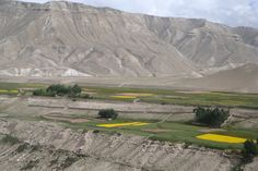 The beautiful view from Lo-Mangthang of Upper mustang trekking. It was barley and mustered field along the Upper Mustang trail.