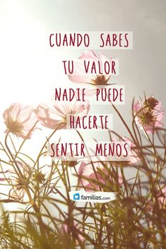 When you know your value no one can make you feel less. (Español-Spanish quote)
