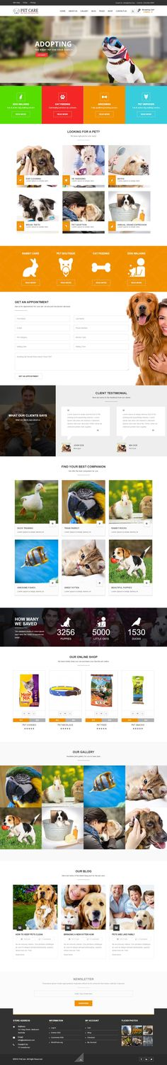 PetCare – WordPress Multipurpose Theme >>  Petcare is fully responsive #WordPress #Theme best suitable for small #petstore, clinic and #pet day care centers.