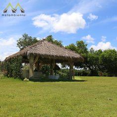 Conheça um pedacinho do nosso paraíso, que é o lugar ideal para apreciar o verde e canto dos pássaros! #casamentosnocampo #casaremrecife #casamentoecologico #metambiental #ecocasamento #igarassu #pernambuco