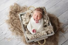 Paisley {Hagerstown/Frederick MD Newborn Photography}