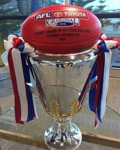 Western Bulldogs, Storm Troopers, Great Team, Sports Pictures, Red White Blue, Doggies, Australia, Football, Boys