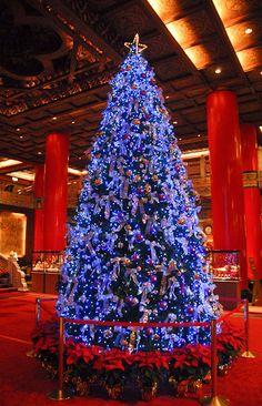 Blue-Christmas-tree-