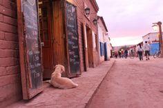 Amor por San Pedro de Atacama no Chile - Longe e Perto - Blog com dicas de viagem