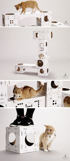 Modular Cardboard Kits Let You Build Your Cat's Dream House #KittyCardboard